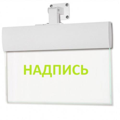 Светильник аварийный Молния ULTRA РИП 'Направление к эвакуационному выходу прямо (левосторонний)' (220В) с аккумулятором