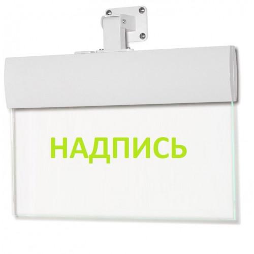 Светильник аварийный Молния ULTRA РИП 'FIRE / EXIT' (220В) с аккумулятором